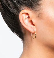 Small hoop earrings gold