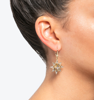 Star dropped earrings