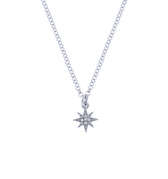 Two in one star necklace silver 3