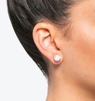 Classic stud earrings gold copy