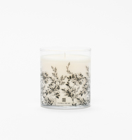 091317 it candle 16716 f v1 web